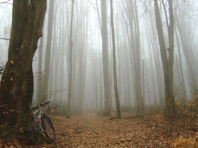 Na rowerze motywacja